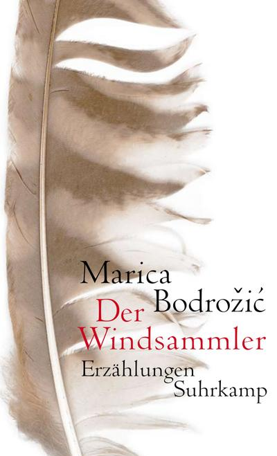 Der Windsammler: Erzählungen