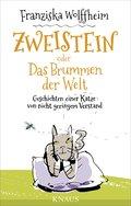 Zweistein oder Das Brummen der Welt; Geschich ...