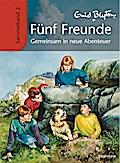 Fünf Freunde - Gemeinsam in neue Abenteuer: Sammelband 2