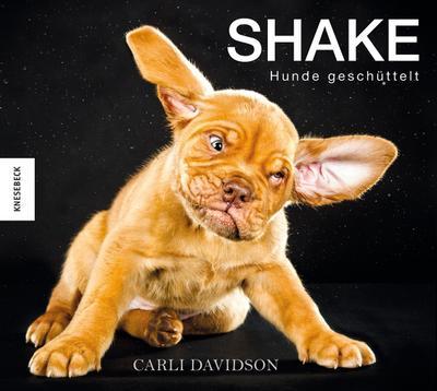 Shake - Hunde