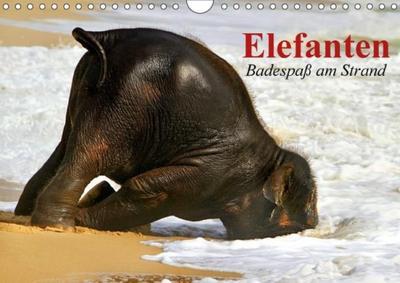 Elefanten. Badespaß am Strand (Wandkalender 2017 DIN A4 quer)