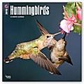 Hummingbirds - Kolibris 2018 - 18-Monatskalender