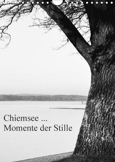 Chiemsee ... Momente der Stille (Wandkalender 2017 DIN A4 hoch)