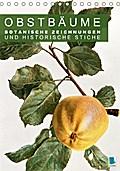 9783665561864 - Obstbäume: Botanische Zeichnungen und historische Stiche (Tischkalender 2017 DIN A5 hoch) - Obst und Früchte: historische Pflanzenstudien. Farblithografien und Kupferstiche (Monatskalender, 14 Seiten ) - کتاب
