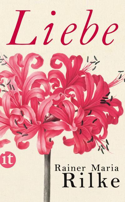 Liebe (insel taschenbuch)
