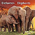 Elefanten Elephants 2017