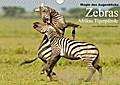 9783665731922 - Winfried Wisniewski: Magie des Augenblicks - Zebras - Afrikas Tigerpferde (Wandkalender 2018 DIN A4 quer) - Winfried Wisniewski hat Zebras über Jahre hinweg mit der Kamera begleitet und faszinierende Fotos von ihnen geschossen. (Monatskalender, 14 Seiten ) - Livre