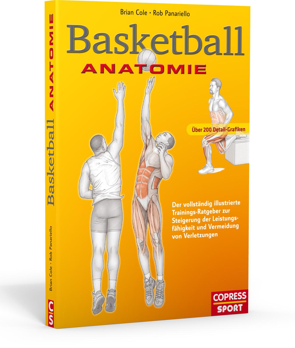 Basketball-Anatomie-Brian-Cole