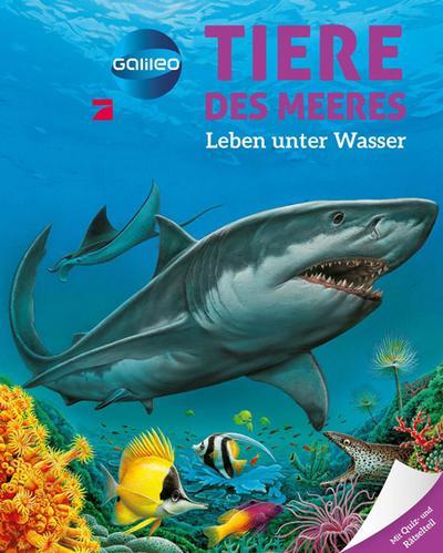 Galileo Wissen: Tiere des Meeres: Leben unter Wasser