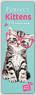 Perfect Kittens - Perfekte Kätzchen 2018