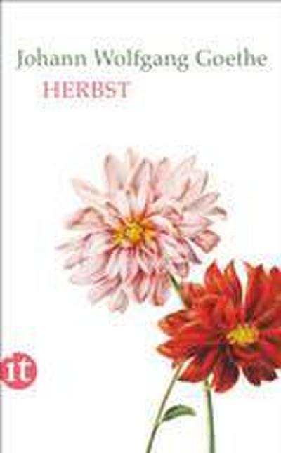 Herbst (insel taschenbuch)