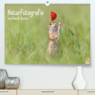 Naturfotografie(Premium, hochwertiger DIN A2 Wandkalender 2020, Kunstdruck in Hochglanz): Das Beste aus der Naturfotografie von Henrik Spranz. (Monatskalender, 14 Seiten ) (CALVENDO Natur)
