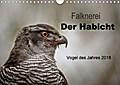 9783665915797 - Tanja Brandt: Falknerei Der Habicht (Wandkalender 2018 DIN A4 quer) - Beeindruckende Bilder zur Beizjagd mit dem Habicht (Monatskalender, 14 Seiten ) - Livre