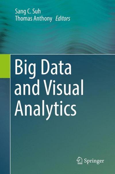 big-data-and-visual-analytics