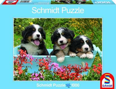 schmidt-spiele-58175-puzzle-drei-welpen-1000-teile