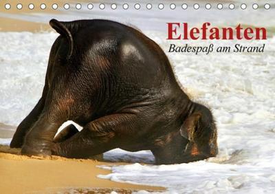 Elefanten. Badespaß am Strand (Tischkalender 2017 DIN A5 quer)
