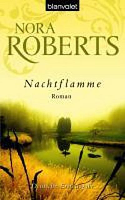 nachtflamme-roman
