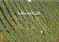 9783665615888 - Hans v. d. Lese: Weinlese (Wandkalender 2018 DIN A4 quer) - Ein Monatskalender mit Fotos der Weinlese von einem, der es wissen muss. Der Autor Hans v.d. Lese hat über 60.000 kg Trauben in 14 Jahren in Deutschland, Frankreich und der Schweiz geschnitten. (Monatskalender,  - كتاب