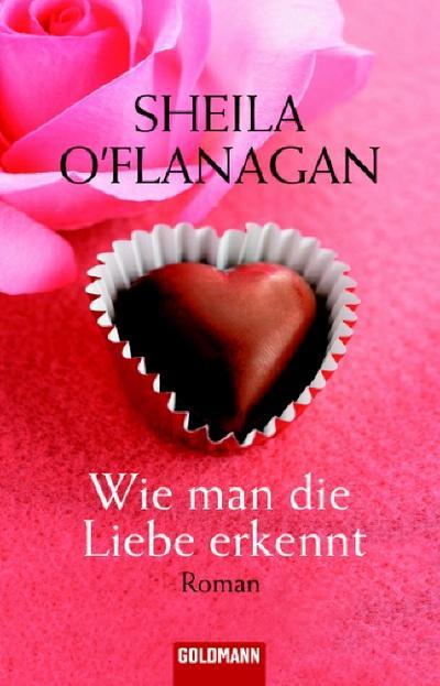 wie-man-die-liebe-erkennt-roman
