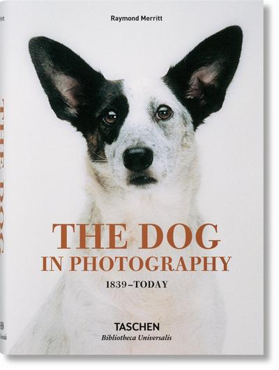 the-dog-in-photography-1839today-bibliotheca-universalis-