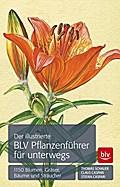 Der illustrierte BLV Pflanzenführer für unter ...