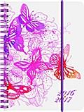 BRUNNEN Schülerkalender/Schüler-Tagebuch 2016/17 Schmetterling