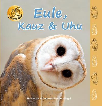eule-kauz-uhu-spannende-natur-