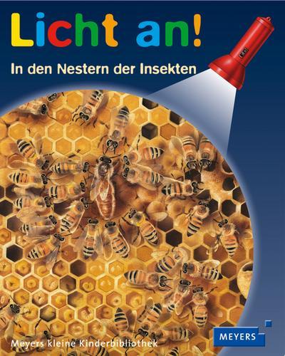 In den Nestern der Insekten: Licht an!