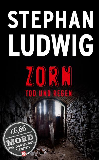 zorn-tod-und-regen-bild-am-sonntag-mega-thriller-2016-