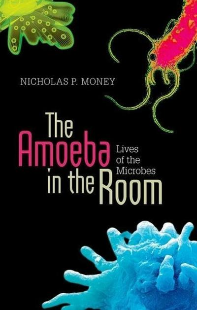 the-amoeba-in-the-room-lives-of-the-microbes