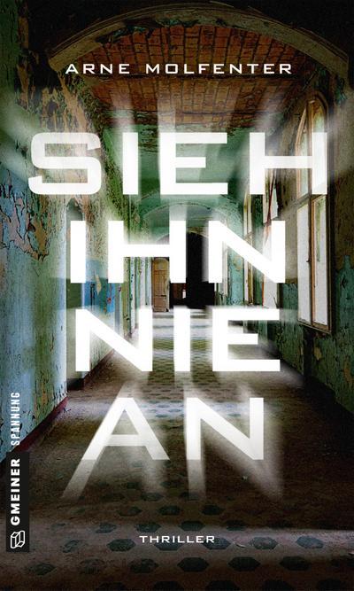 Sieh ihn nie an: Berlin-Thriller (Thriller im GMEINER-Verlag) (Oberkommissarin Westerberg)