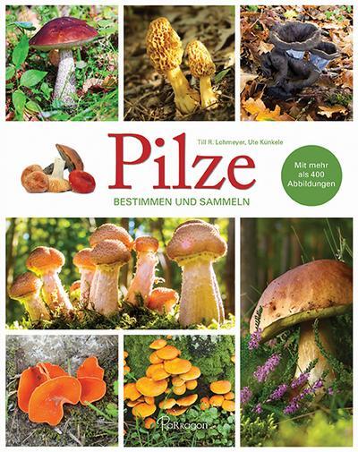 pilze-bestimmen-und-sammeln-mit-mehr-als-400-abbildungen
