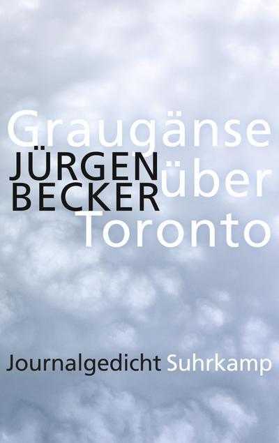 Graugänse über Toronto: Journalgedicht