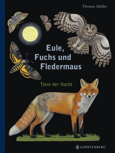 eule-fuchs-und-fledermaus