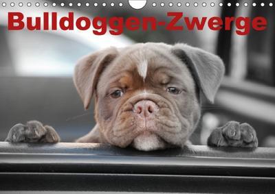 Bulldoggen-Zwerge (Wandkalender 2018 DIN A4 quer)
