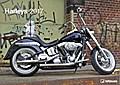 Harleys 2017