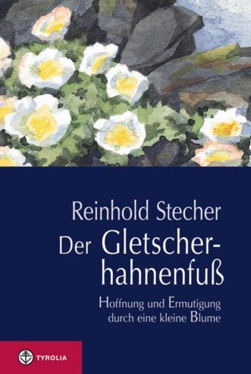 Der-Gletscherhahnenfuss-Reinhold-Stecher