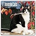 Tuxedo Cats - Tuxedo-Katzen 2018 - 18-Monatskalender