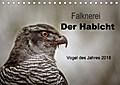 9783665915810 - Tanja Brandt: Falknerei Der Habicht (Tischkalender 2018 DIN A5 quer) - Beeindruckende Bilder zur Beizjagd mit dem Habicht (Monatskalender, 14 Seiten ) - 書