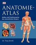 Anatomie-Atlas: Aufbau und Funktionsweise des ...