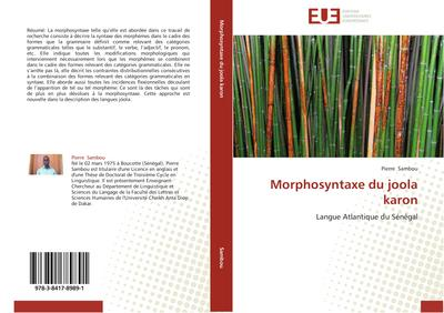 Morphosyntaxe du joola karon