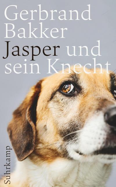 Jasper und sein Knecht (suhrkamp taschenbuch)