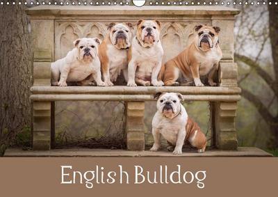 English Bulldog (Wall Calendar 2018 DIN A3 Landscape)