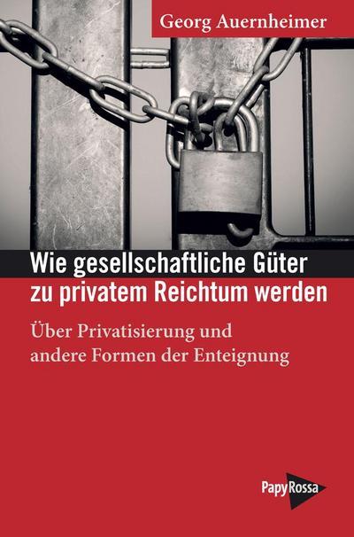 Wie gesellschaftliche Güter zu privatem Reichtum werden: Über Privatisierung und andere Formen der Enteignung (Neue Kleine Bibliothek)