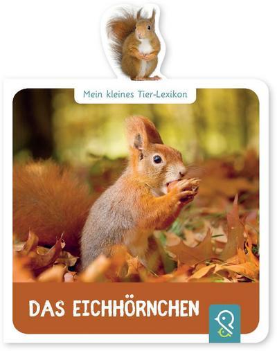 das-eichhornchen-mein-kleines-tier-lexikon-