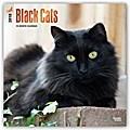 Black Cats - Schwarze Katzen 2018 - 18-Monatskalender