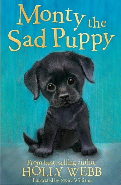 monty-the-sad-puppy-holly-webb-animal-stories-band-35-