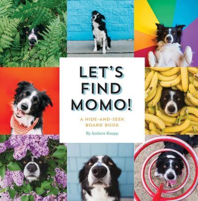 Let`s Find Momo!