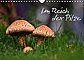 9783665615574 - N N: Im Reich der Pilze (Wandkalender 2018 DIN A4 quer) - Sinneseindrücke aus den Lebensraum Wald (Monatskalender, 14 Seiten ) - كتاب