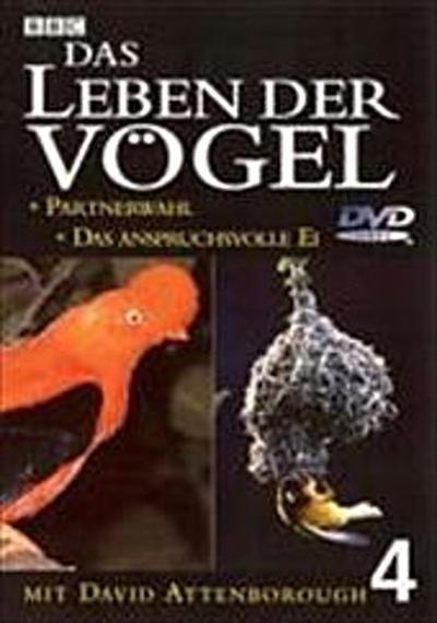 das-leben-der-vogel-teil-4